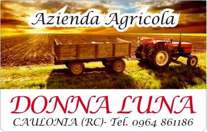 """""""Donna Luna"""" Hotel Ristorante"""